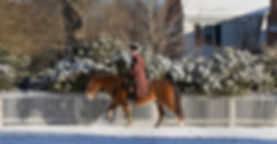 Colonial Williamsburg Winter_edited.jpg