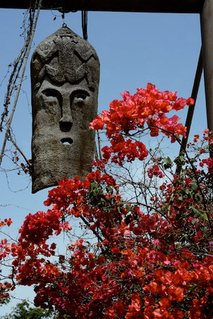 Tenerife Mask and blooms