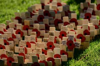 Armistice Day Brighton, 2014