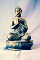 Meditating Buddah statue, 2015