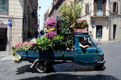 Rome, Flower truck, 2014