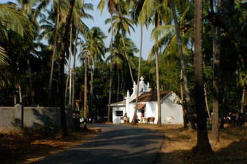 Goan Church, 2008