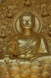 Meditating Buddah, Peace Pagoda, Portrait 2013