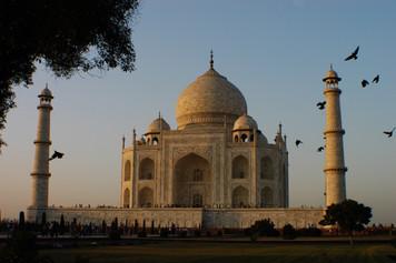 Taj Mahal, 2008