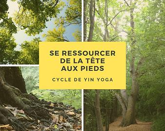 Cycle de Yin Yoga : Se Ressourcer de la Tête aux Pieds
