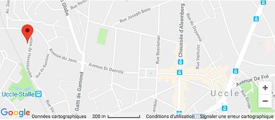 Constellations Familiales : consultations individuelles à Bruxelles, Belgique, avec Michaël Katzeff | voir la situation sur le plan