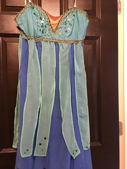 Adult Women's Ballet Costume