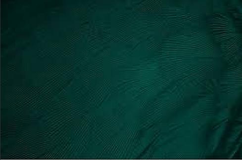 Screen Shot 2021-01-19 at 1.49.33 PM.png