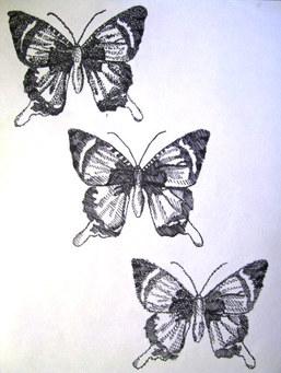 butterfly three ways