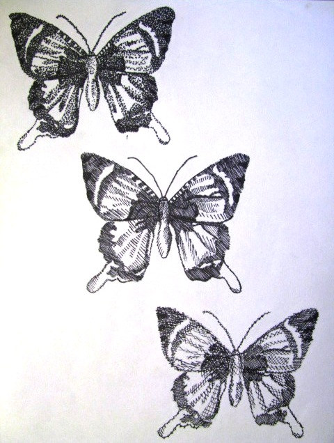 butterfly three ways