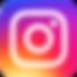 pri instagram logo.png
