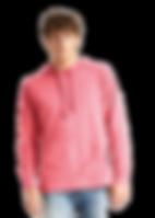 hoodie pink.png