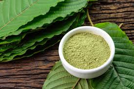 Missouri State Representative Phil Christophanelli Files Legislation Protecting Kratom Consumers