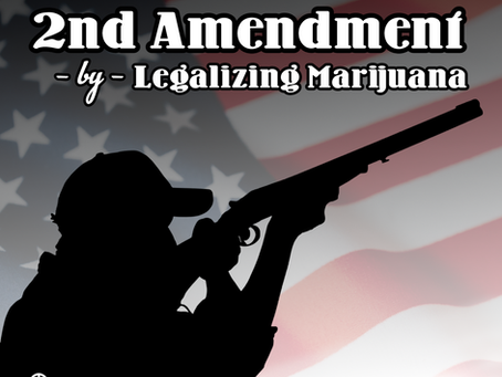 MO State Rep. Nick Schroer Files Legislation Protecting 2nd Amendment Rights of Marijuana Patients