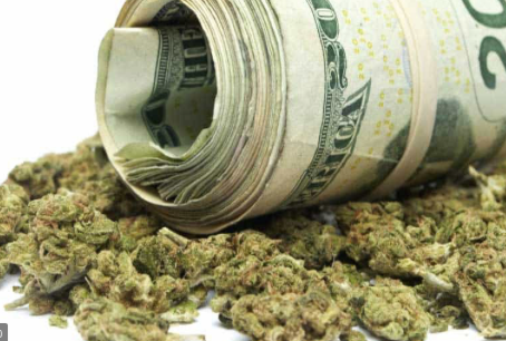 """Politico: State Marijuana License Caps are a """"breeding ground for bribery and favoritism"""""""