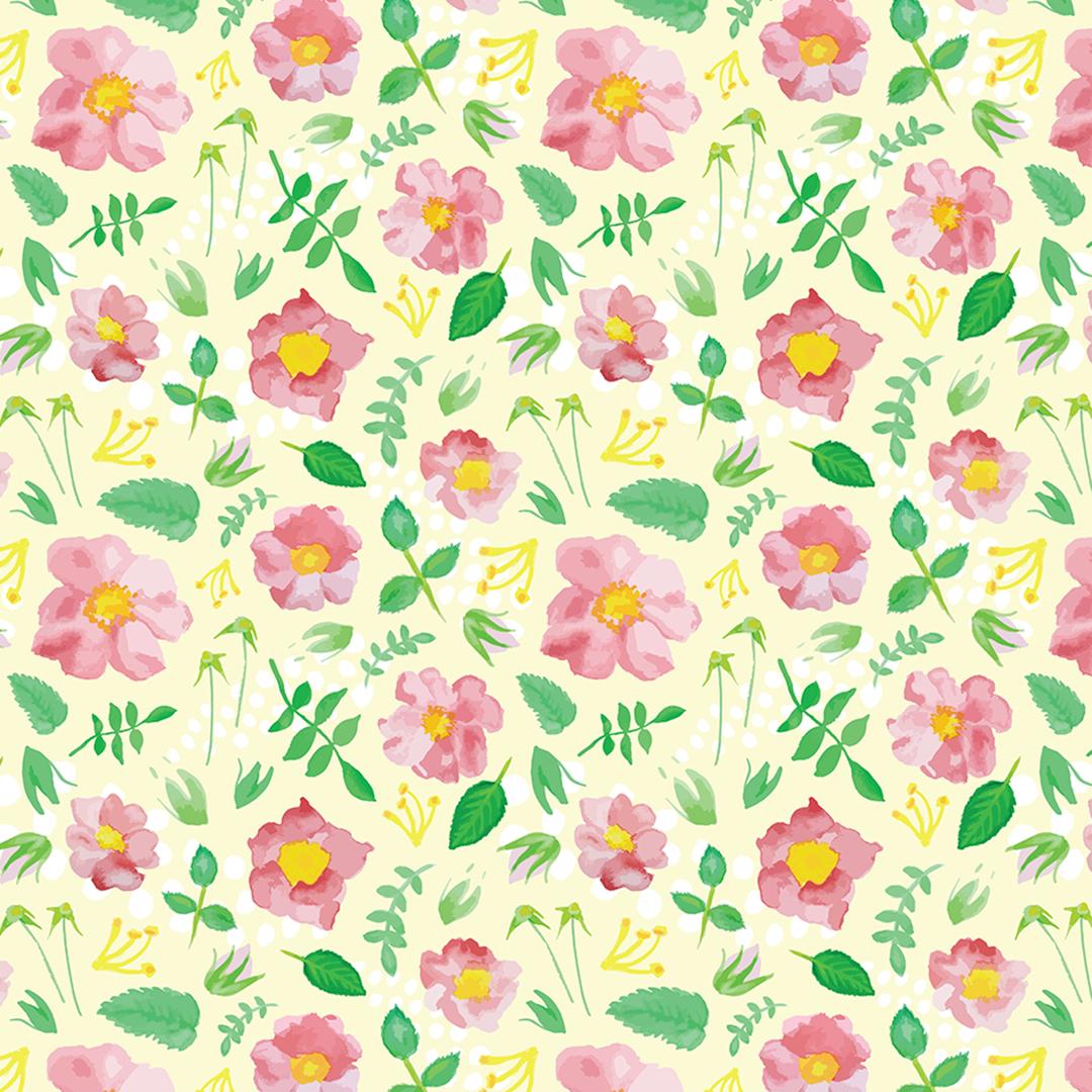 003_Flowers_CA-Rose_1080sq.png