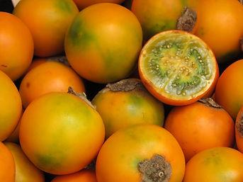lulo-naranjillo-bebedero-costa-rica-liz-