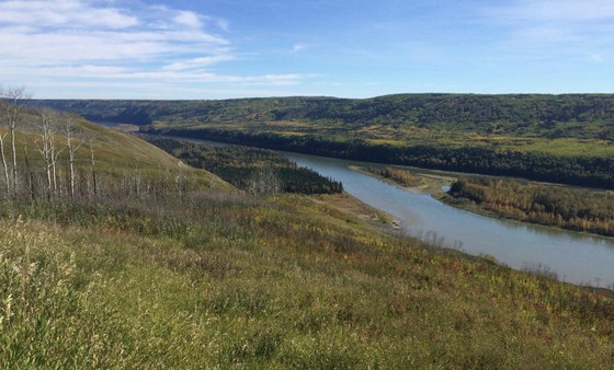 High-Level Review of Site C Environmental Assessment Documents