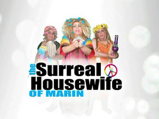 Album Art for Boo Flannel's New Parody Video The Surreal Housewife of Marin