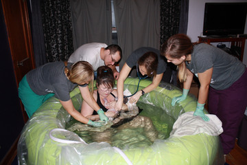 Home Birth Midwife Team