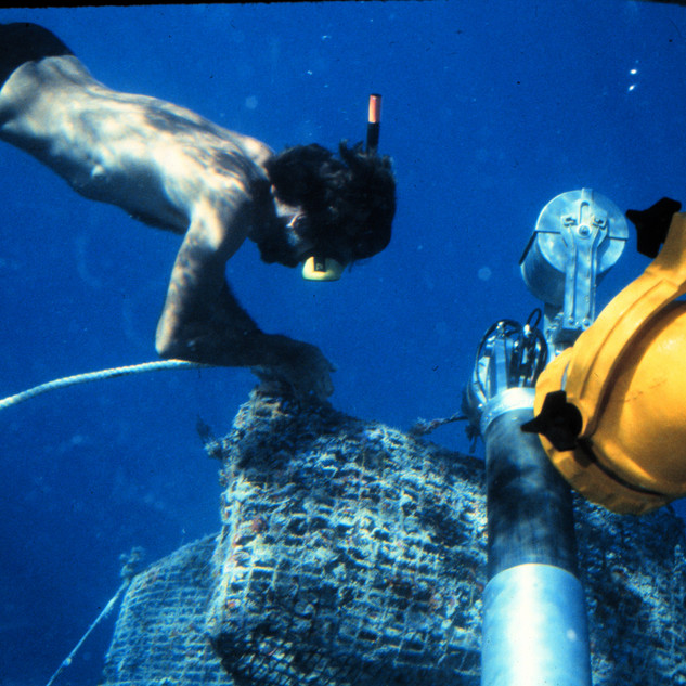 A diver trying to cut through a net
