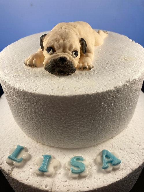 Winston, the Pug