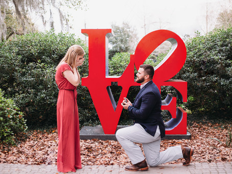 Valentine's Proposal Photo Session