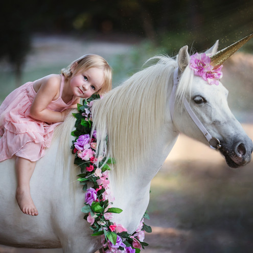 Child Photographer - Baby Photographer - Milestone Photos - Kids pictures - unicorn minis
