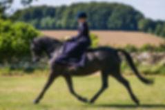 Katherine Allard, equine, vet physio, Bath, Wiltshire, Chew Valley, Bristol