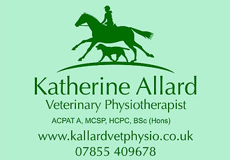 Bristol, Wiltshire, Somerset, Bath, Dorset, Gloucestershire, katherine allard vet physio, chartered  physio, B&W vetes Failand, The stables equine practice, bellevue vets frome, garston vets, peter schlater vets, totally tack frome, wadswick country store.