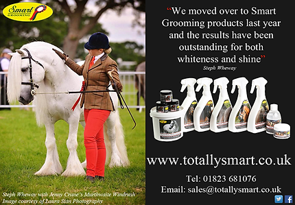 Smart grooming, totally smart grooming, Grace Churton, Katherine Allard vet physio, collective equestrian, bristol, Equine physio bristol, bath, wiltshire, radstock, frome, warminster, stretcholt, badgworth..