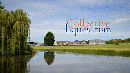 Katherine Allard vet physio, Collective Equestrian, Chew Magna, Mendip Plains EC, Dressage, Bristol