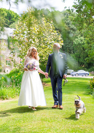Dogs love to join elopement weddings at Millbrook