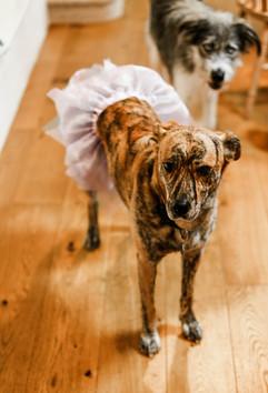 Pre-wedding nerves!