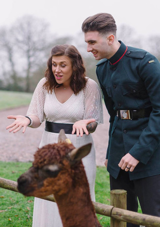 Alpacas add a unique element to elopement weddings at Millbrook