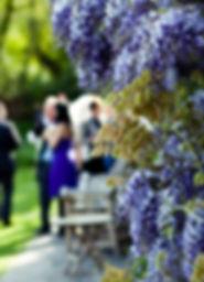 Guests garden.jpg