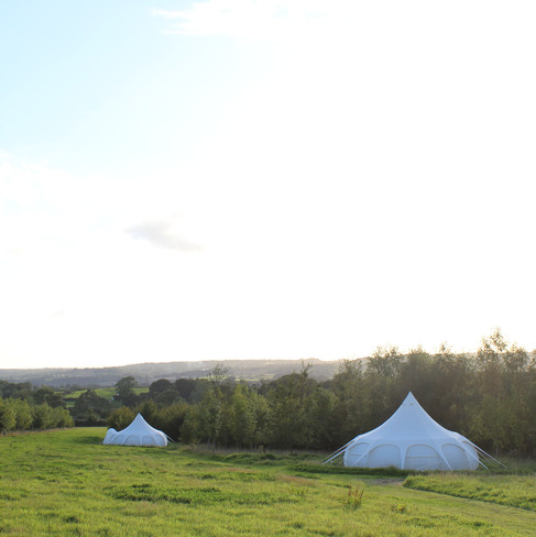 woodland fringes glamping Devon wedding
