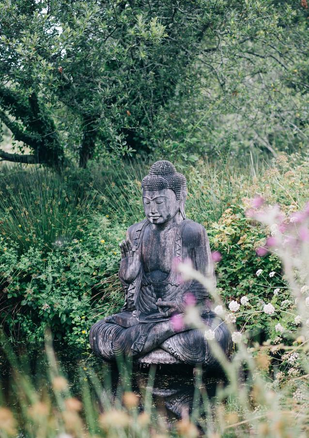 Ornamental garden at Pengelly Retreat