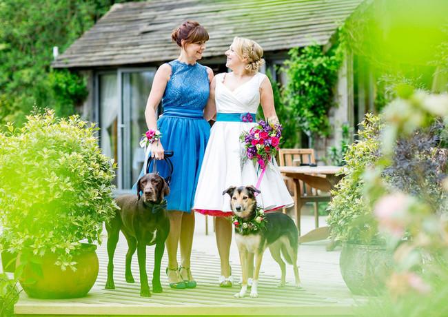 Dog friendly elopements at Millbrook