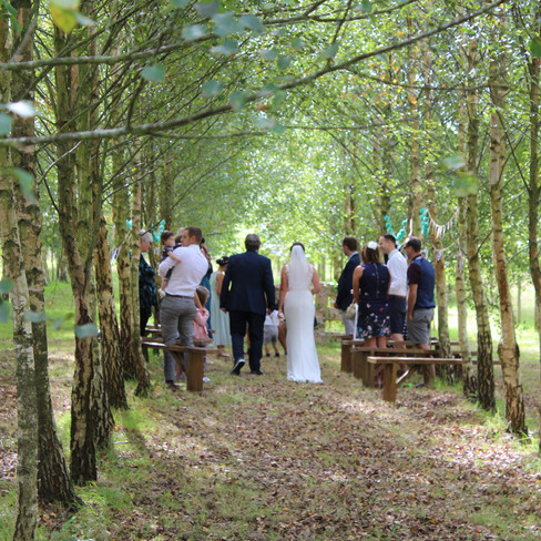 covid secure woodland wedding Devon wedd