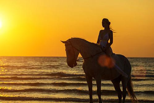 Horse Adventure Getaway