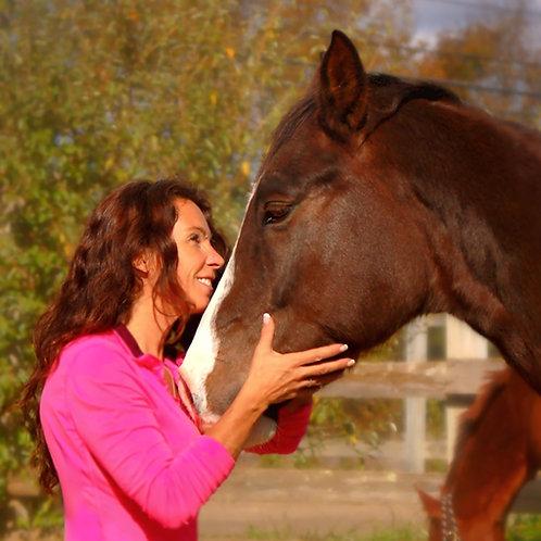 Equine Gestalt Coaching