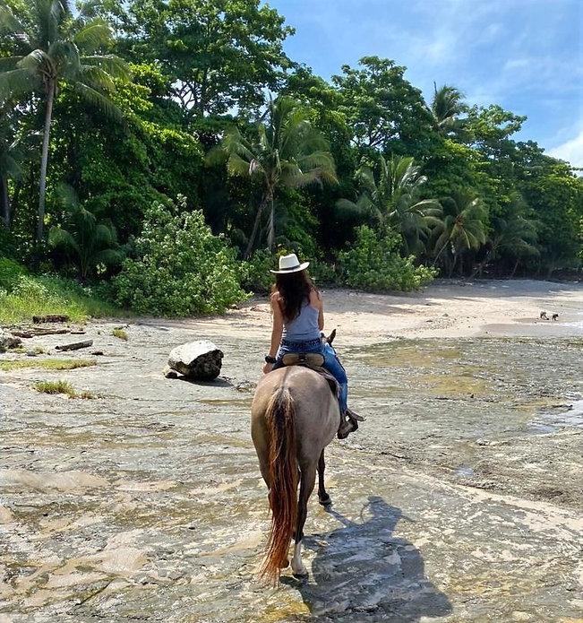 Beach Horseback Riding Sunny Paradise