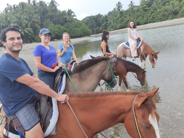 Beach, River, Farm Rides are the top