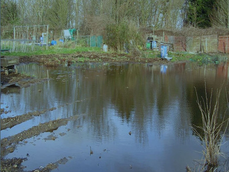 Bretons Farm Allotments & Harrow Lodge Park Flooded