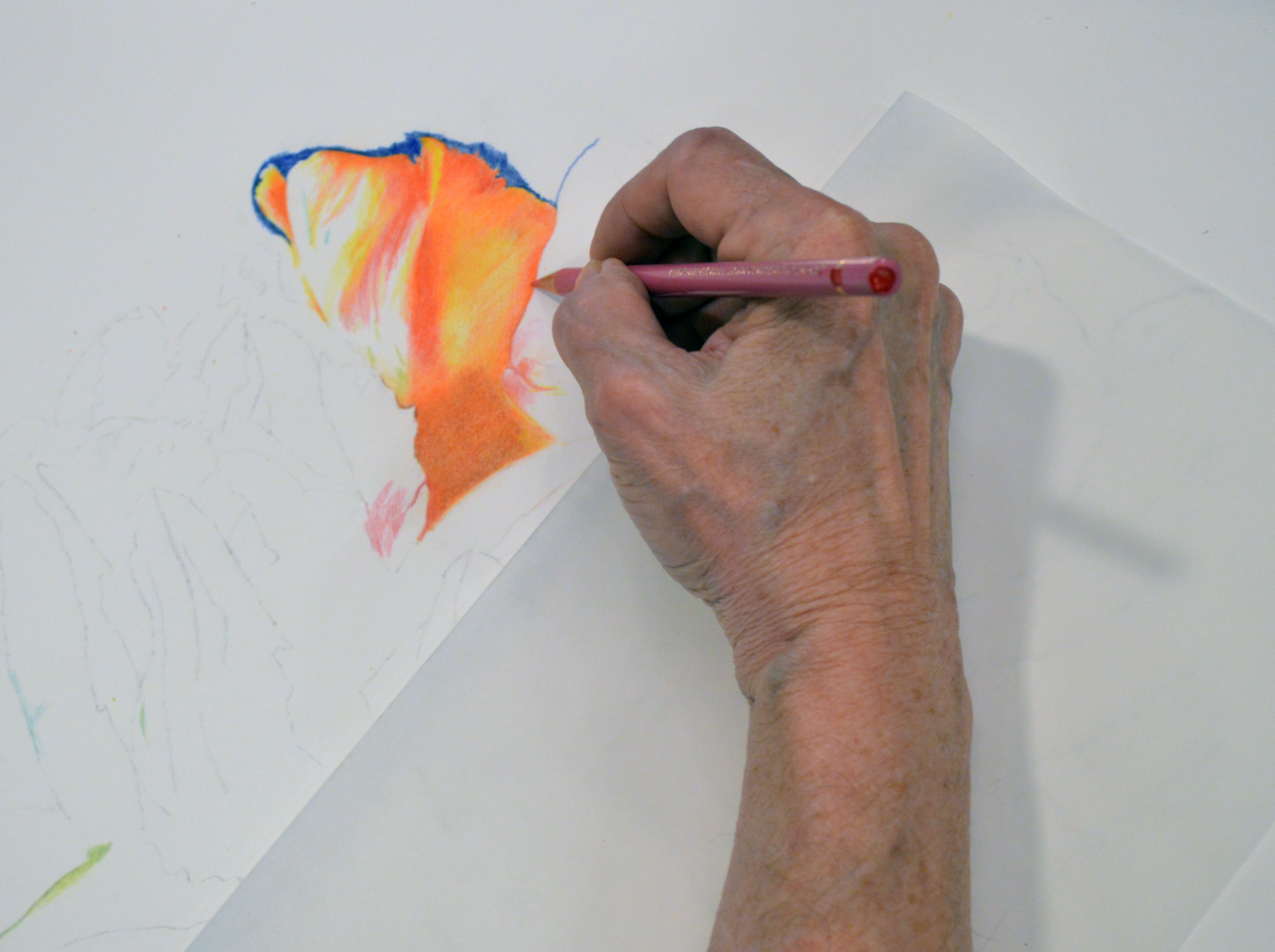 ColoredPencil1.jpg