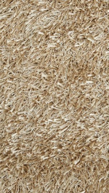 carpet 5.PNG