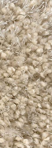 carpet 4.PNG