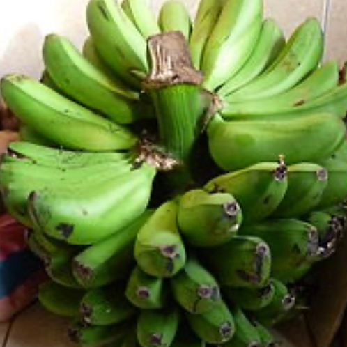 Fresh green Bananas (Matooke)