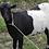Thumbnail: Goat (Embuzi)